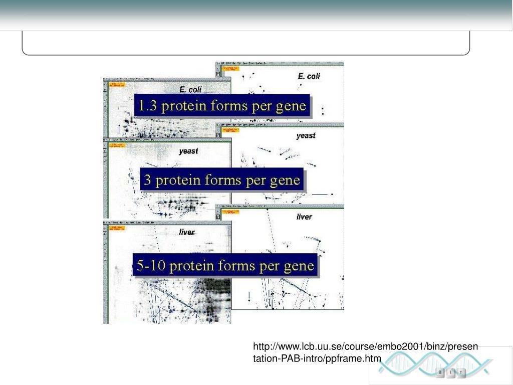 http://www.lcb.uu.se/course/embo2001/binz/presentation-PAB-intro/ppframe.htm