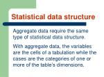 statistical data structure23