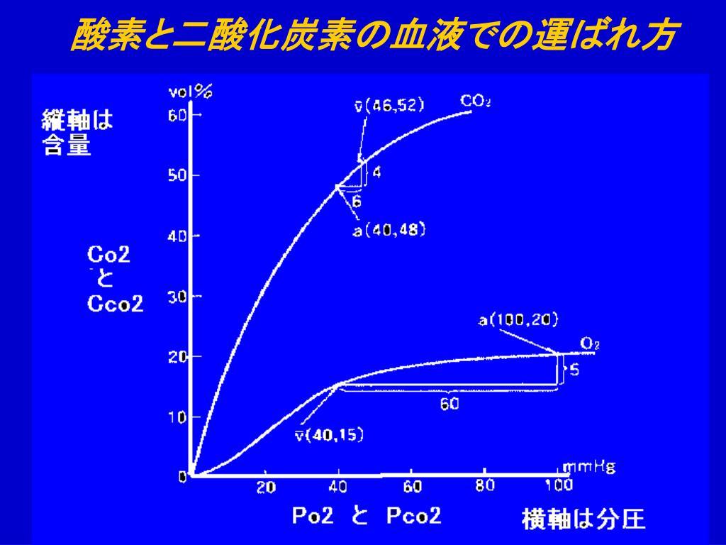酸素と二酸化炭素の血液での運ばれ方
