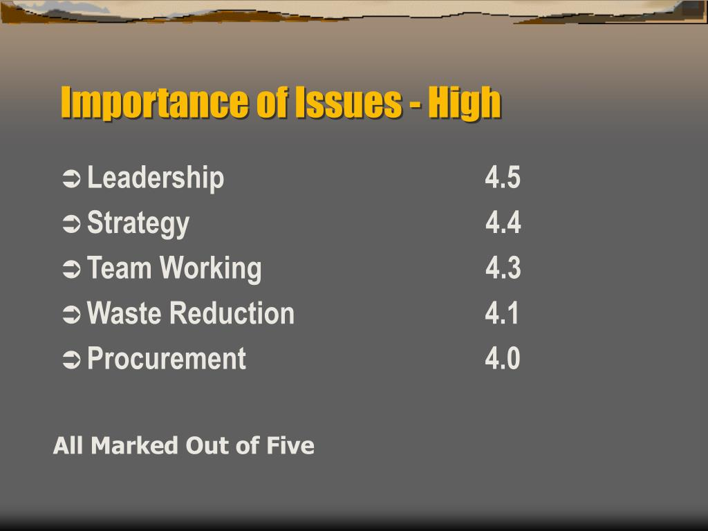 Importance of Issues - High
