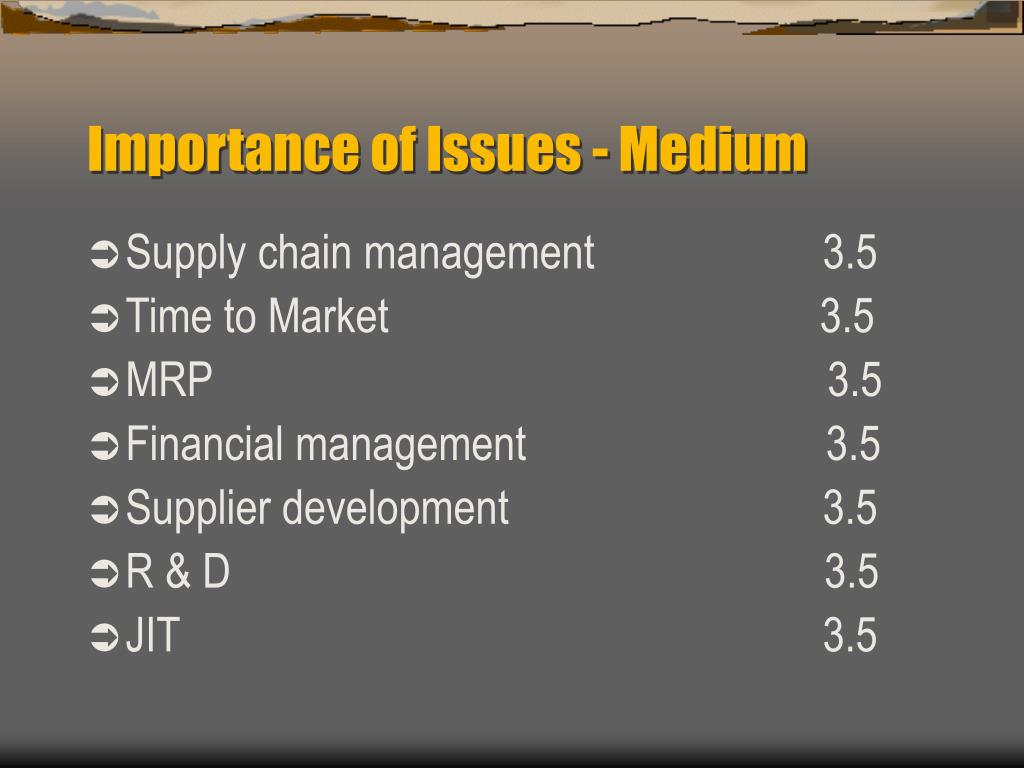 Importance of Issues - Medium