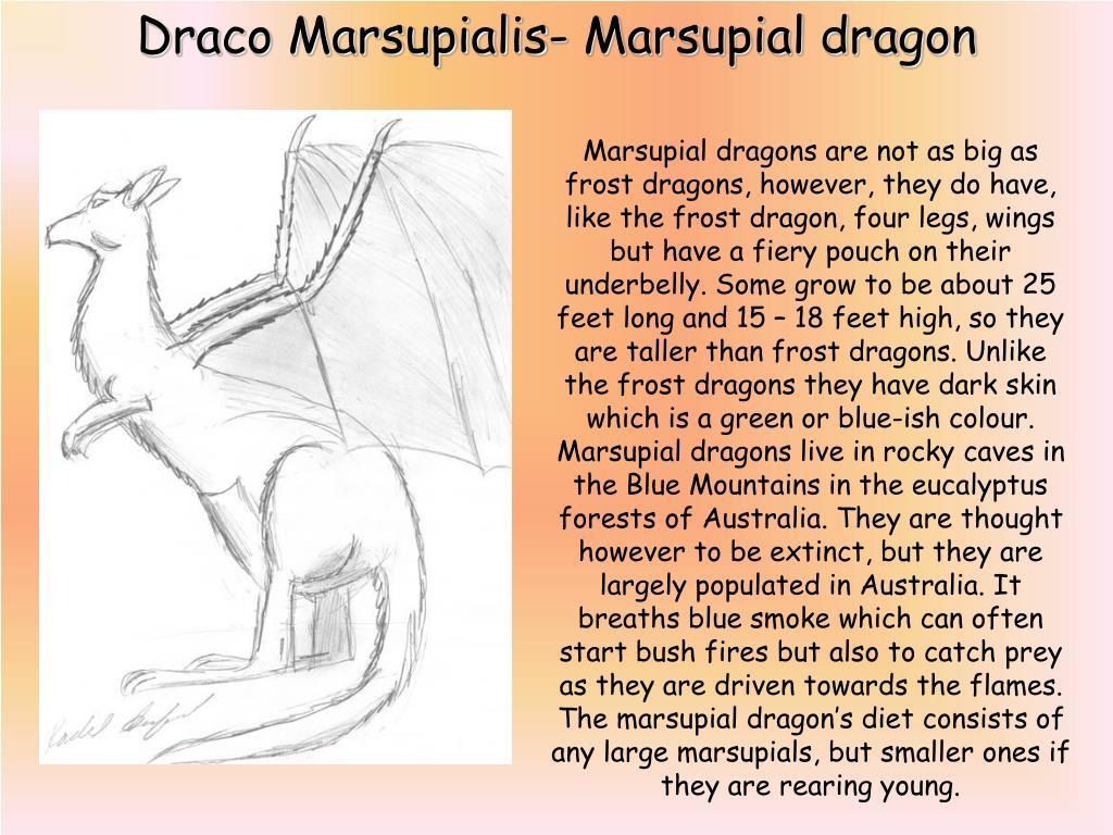 Draco Marsupialis- Marsupial dragon