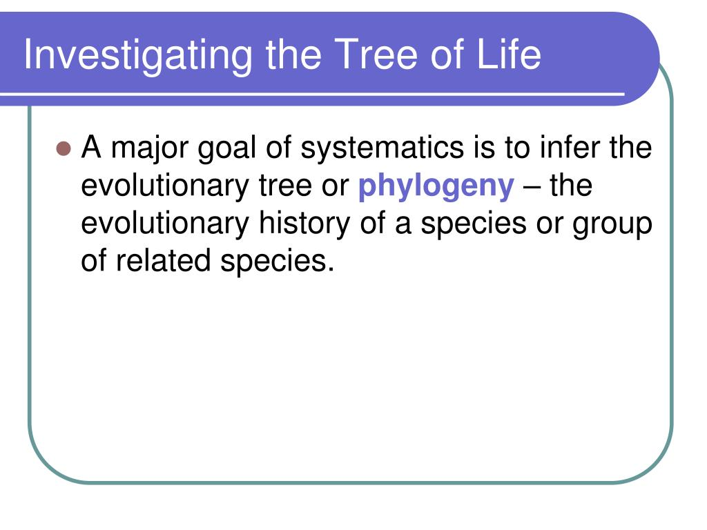 Investigating the Tree of Life