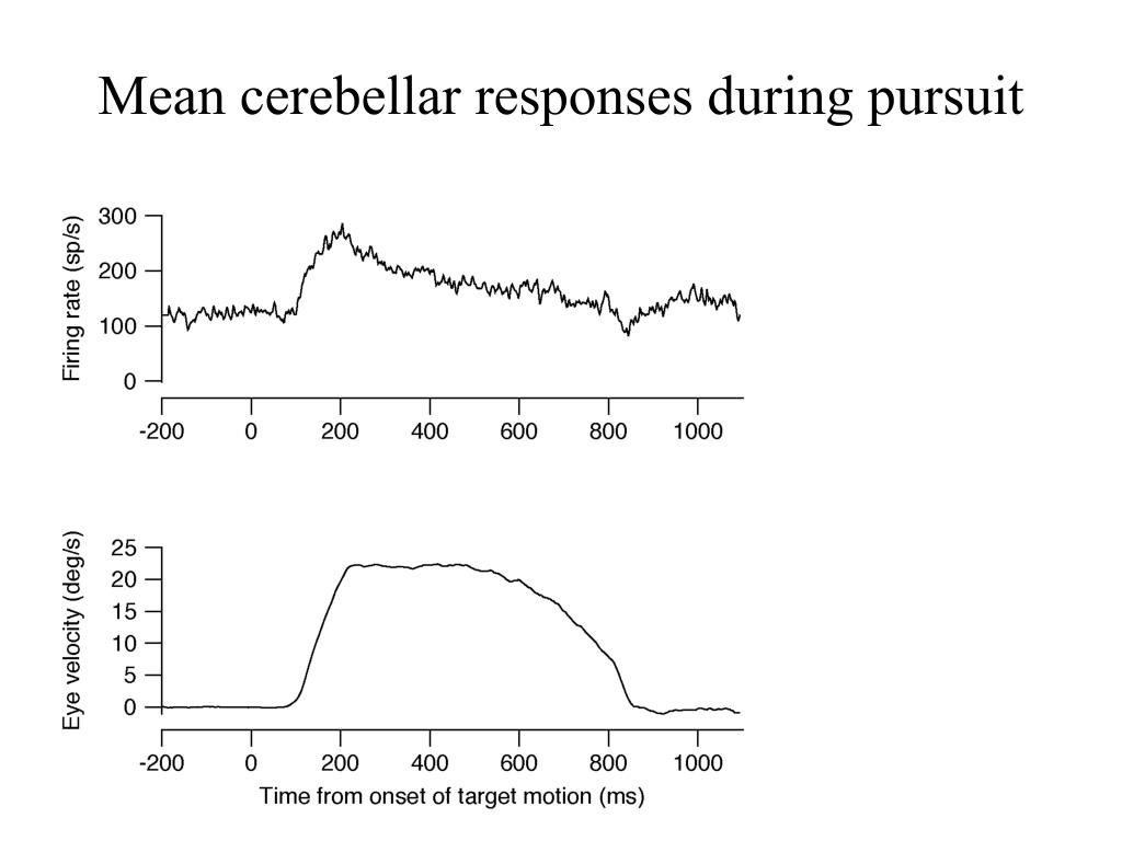 Mean cerebellar responses during pursuit