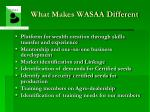 what makes wasaa different