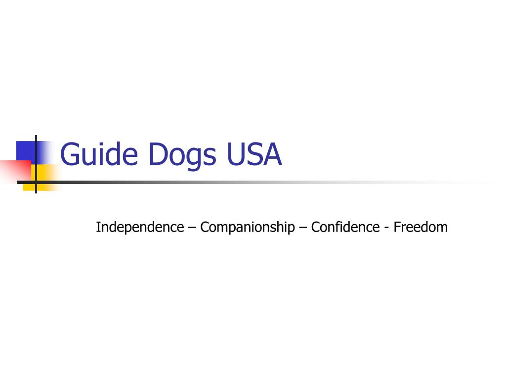 Guide Dogs USA