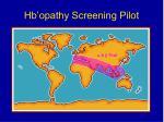 hb opathy screening pilot24