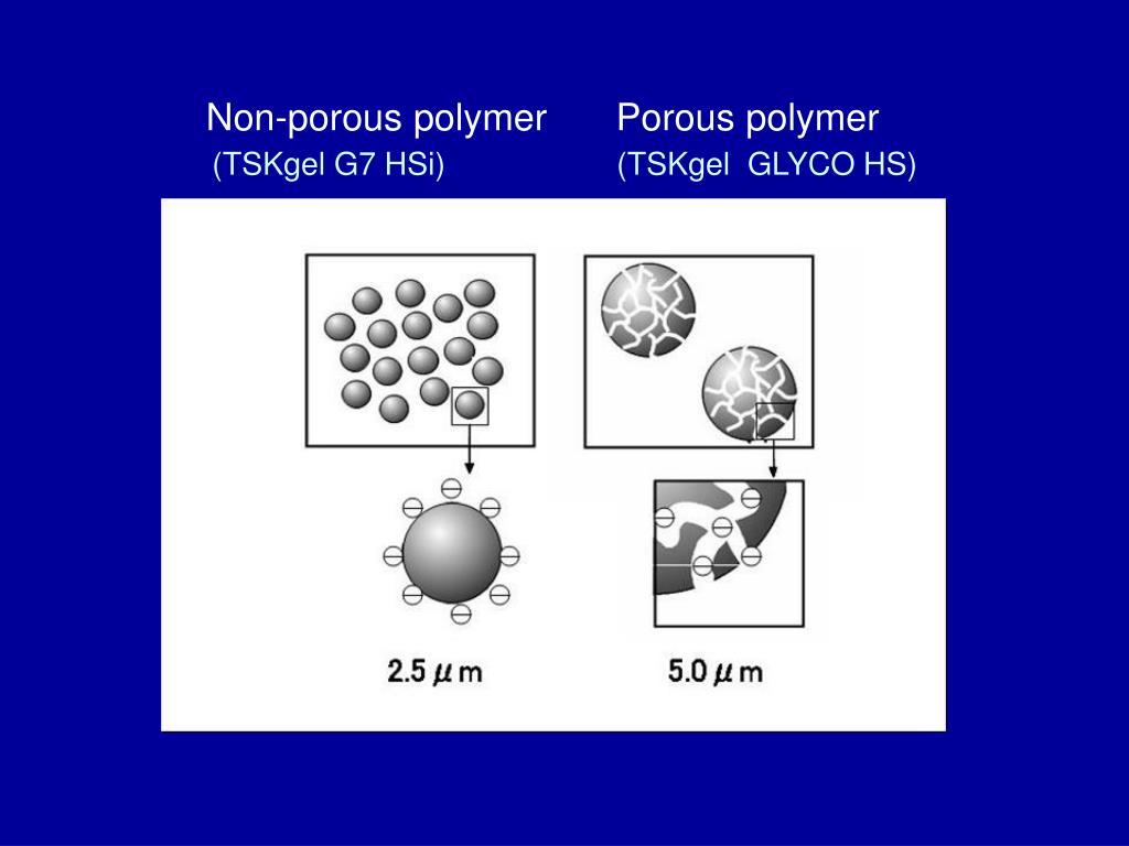 Non-porous polymer