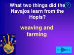 what two things did the navajos learn from the hopis