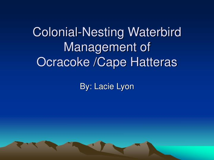 Colonial nesting waterbird management of ocracoke cape hatteras