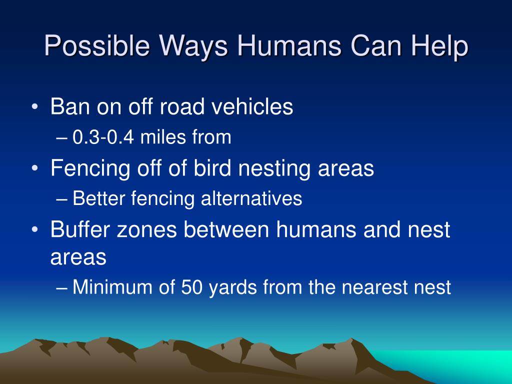 Possible Ways Humans Can Help
