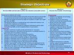 strategic objectives10