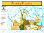 forestry potential33