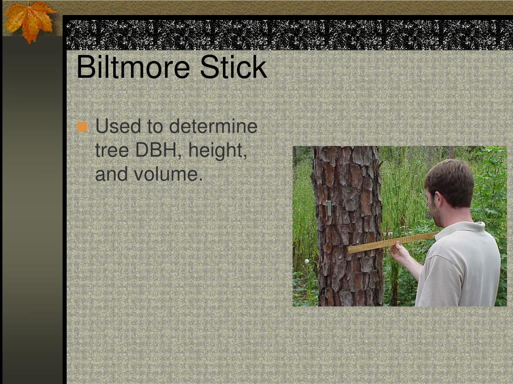 Biltmore Stick