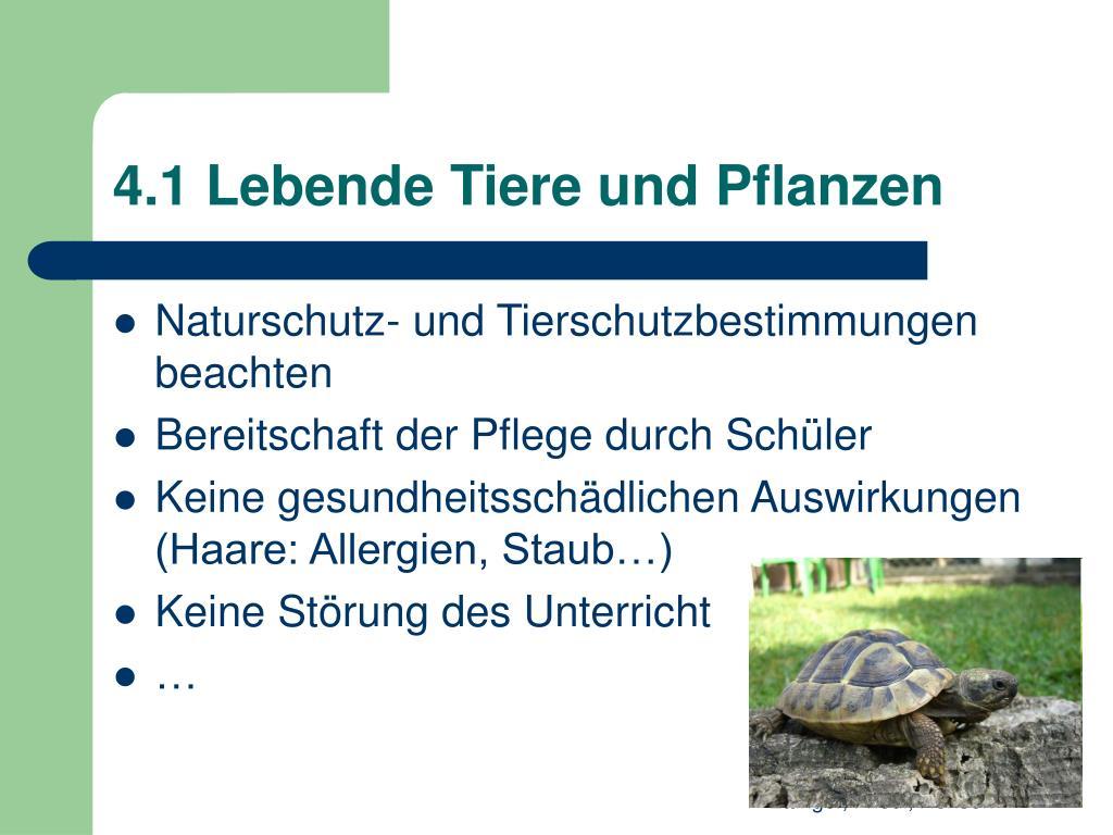 4.1 Lebende Tiere und Pflanzen