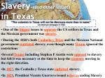 slavery and other issues in texas