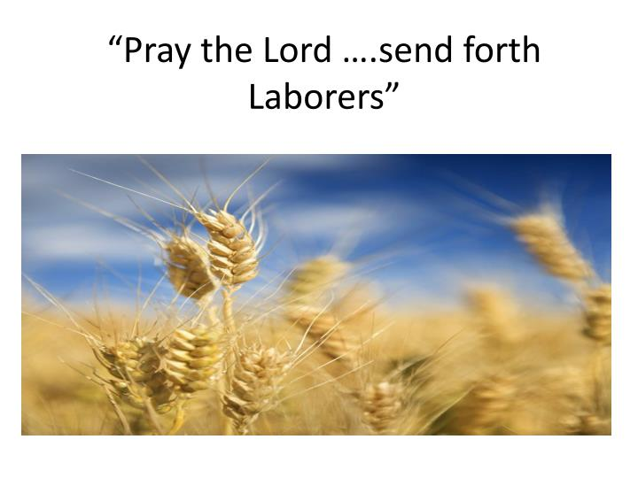 Pray the lord send forth laborers l.jpg