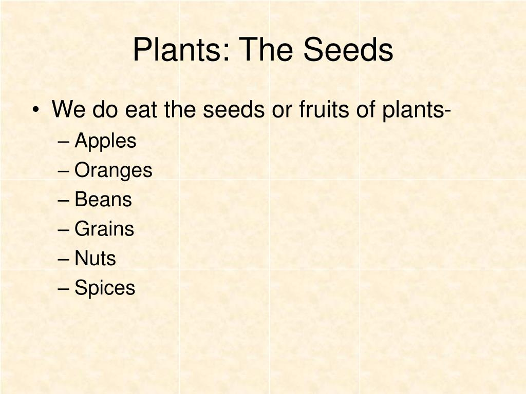 Plants: The Seeds
