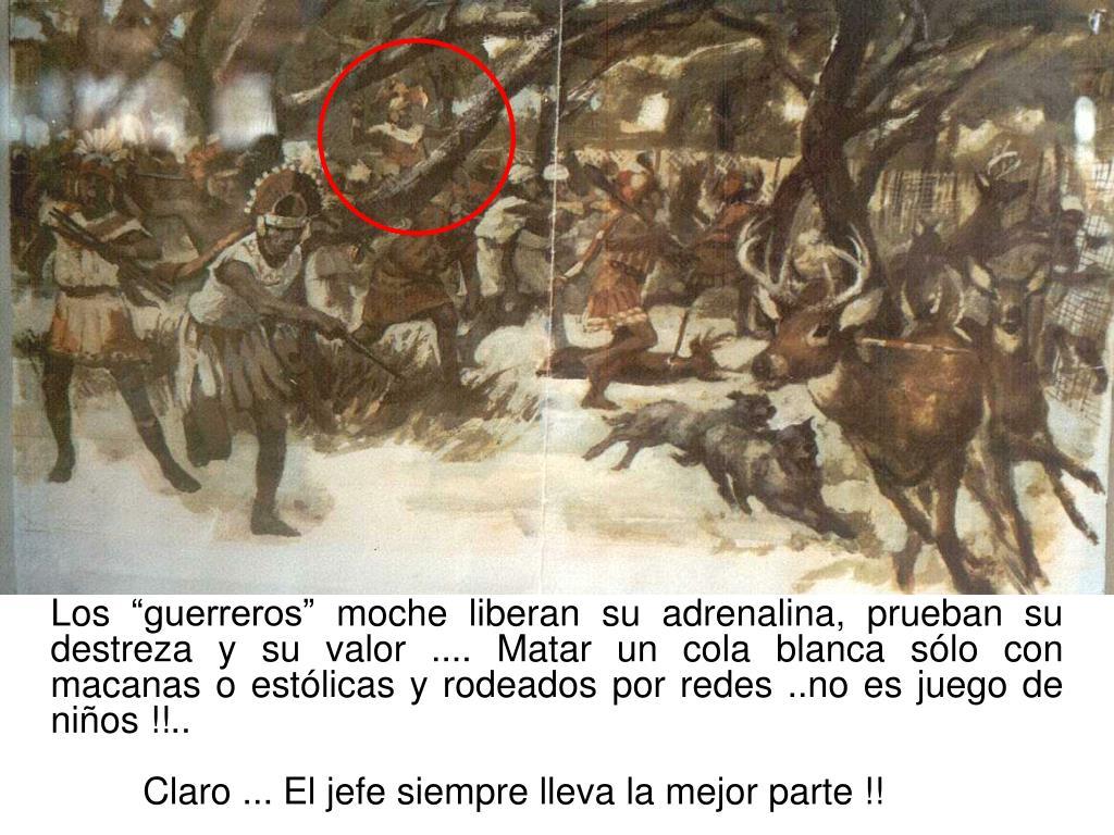 """Los """"guerreros"""" moche liberan su adrenalina, prueban su destreza y su valor .... Matar un cola blanca sólo con macanas o estólicas y rodeados por redes ..no es juego de niños !!.."""