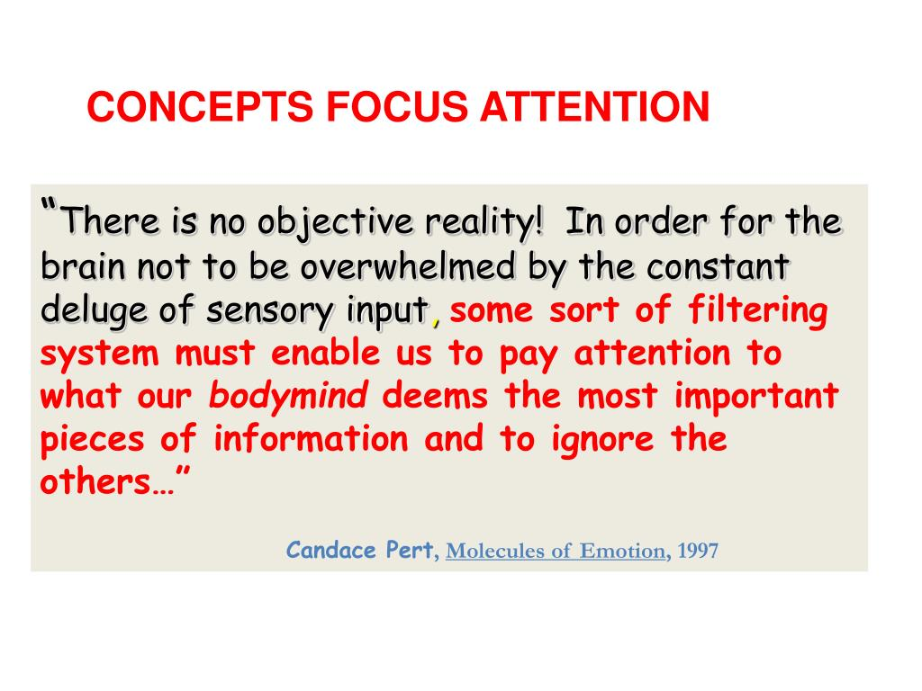 CONCEPTS FOCUS ATTENTION