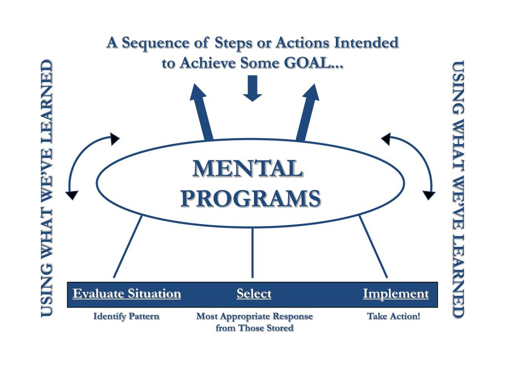 A Sequence of Steps or Actions Intended