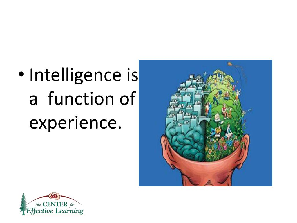 Intelligence is a function of experience.