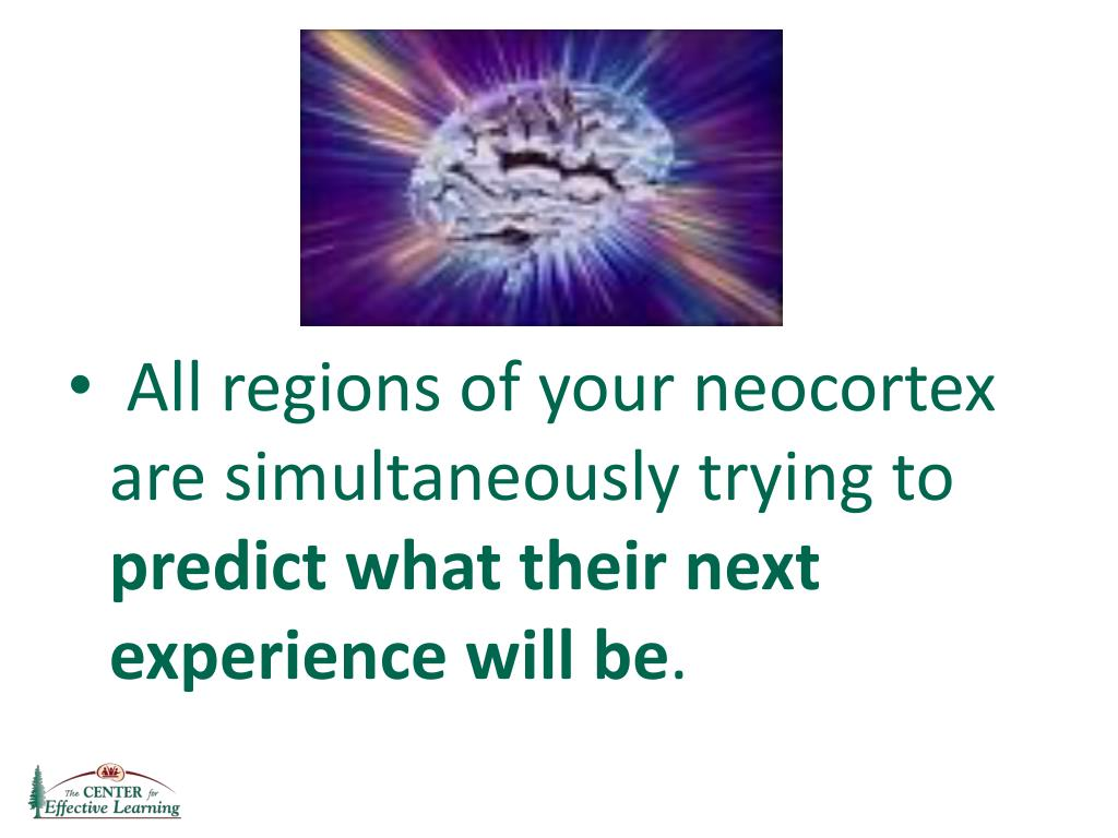 All regions of your neocortex are simultaneously trying to