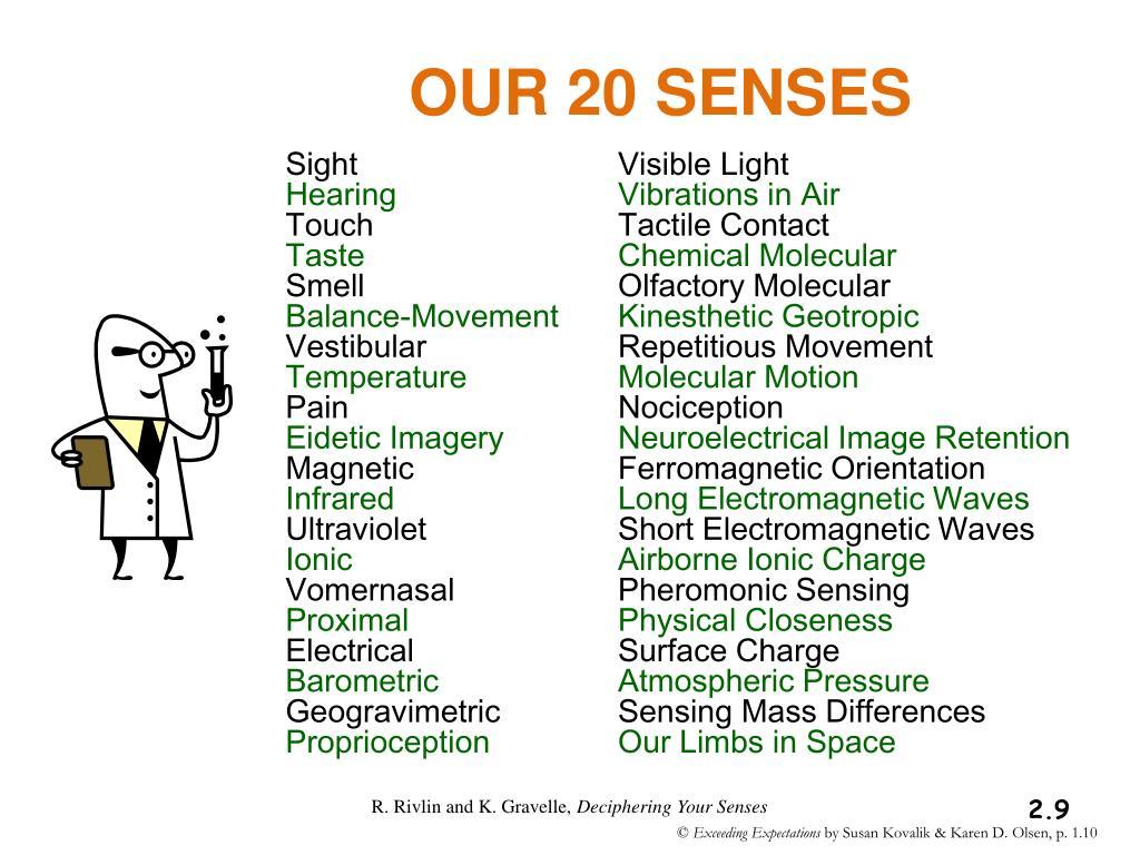 OUR 20 SENSES