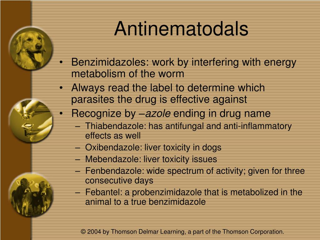 Antinematodals