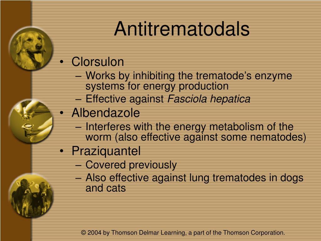 Antitrematodals