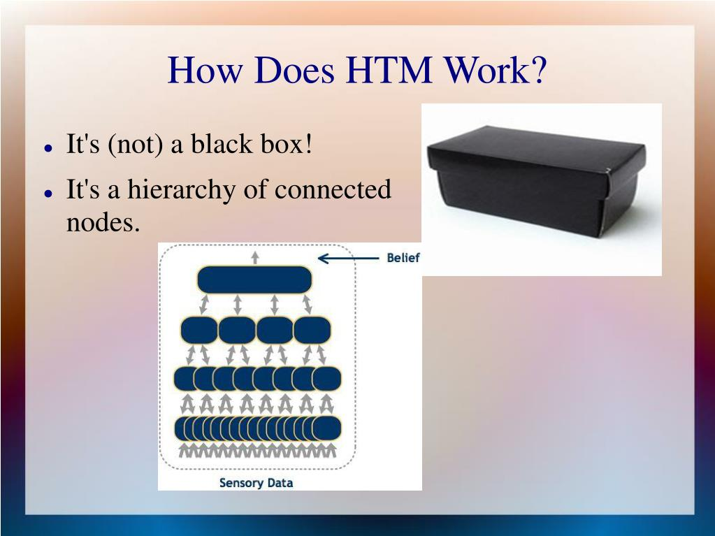 How Does HTM Work?