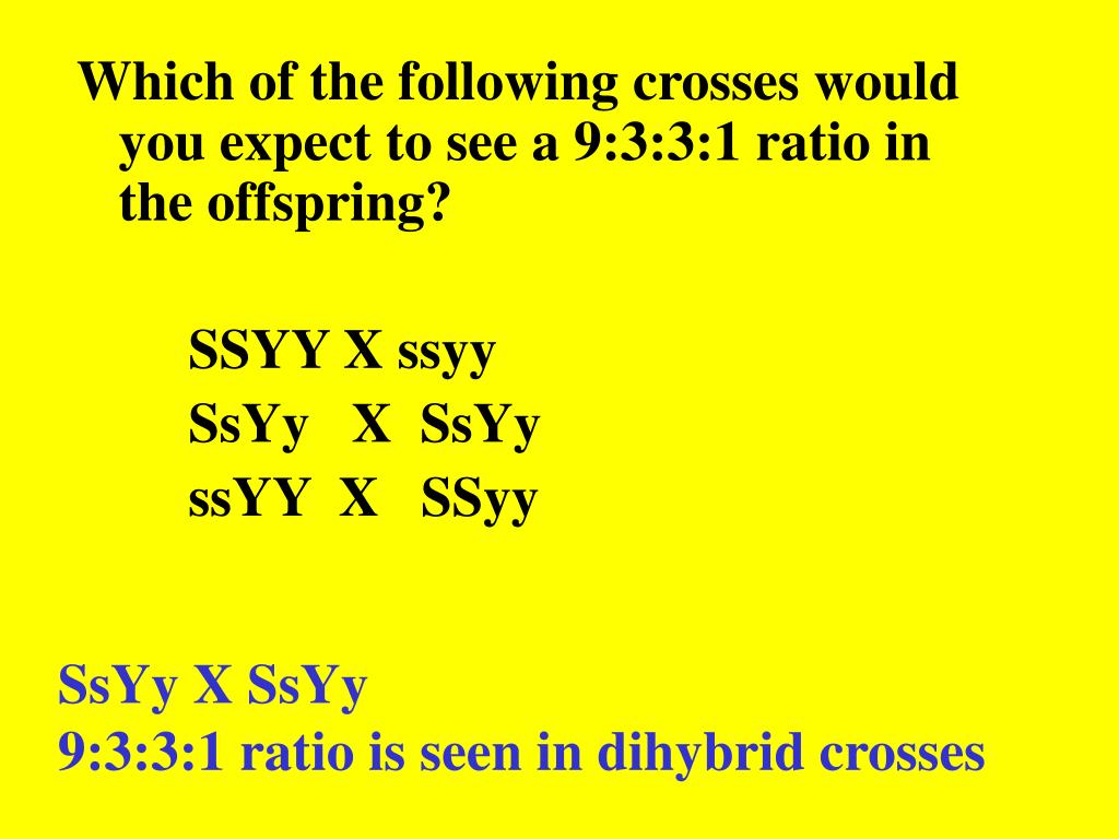 Which of the following crosses would you expect to see a 9:3:3:1 ratio in the offspring?
