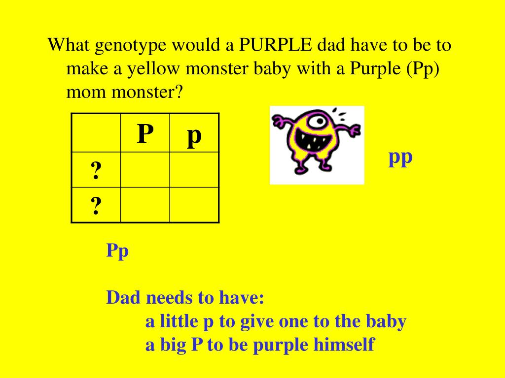 What genotype would a PURPLE dad have to be to make a yellow monster baby with a Purple (Pp) mom monster?