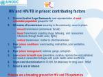 hiv and hiv tb in prison contributing factors
