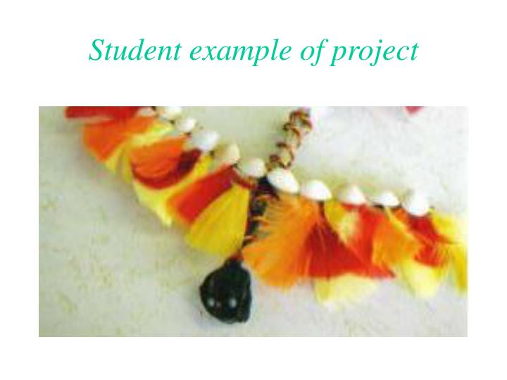 Student example of project