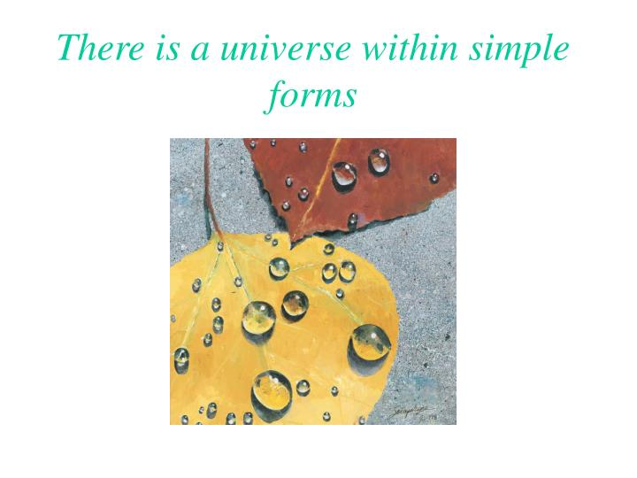 There is a universe within simple forms