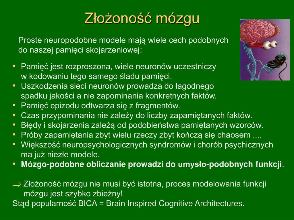 Złożoność mózgu