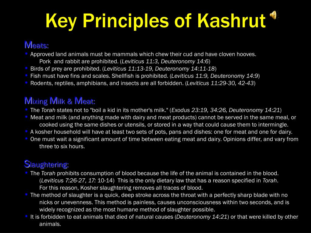 Key Principles of Kashrut