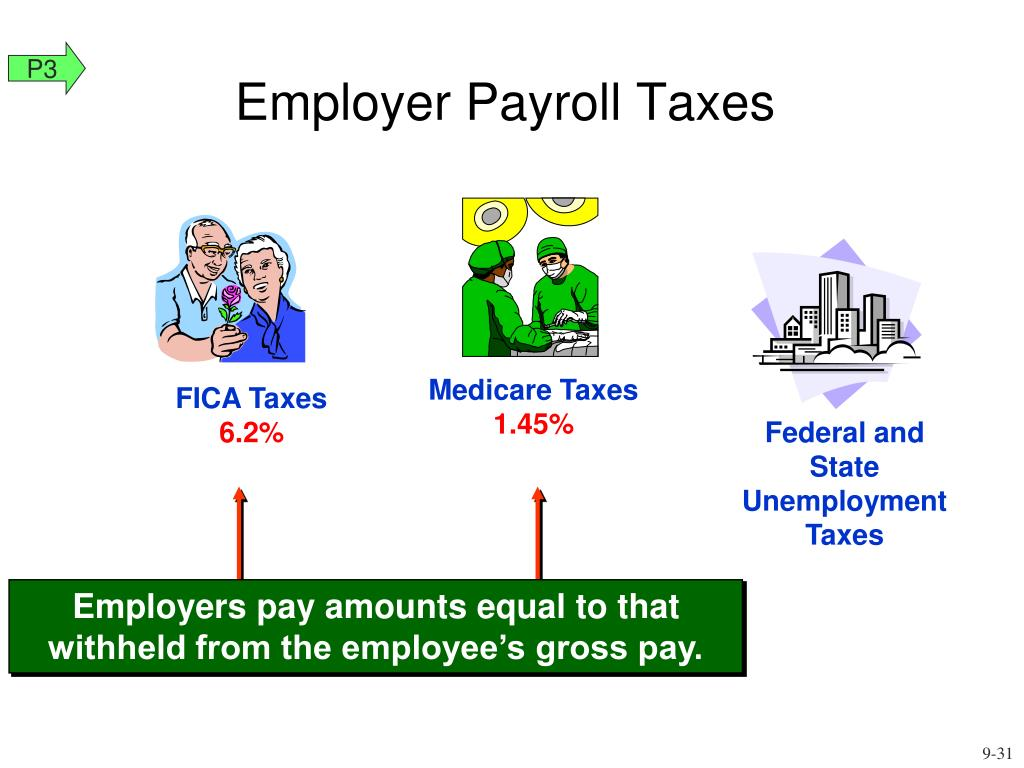 Employers pay amounts equal to that  withheld from the employee's gross pay.