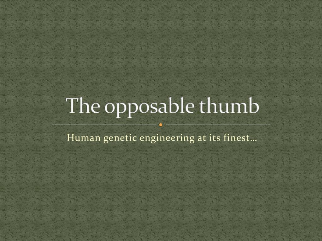 The opposable thumb