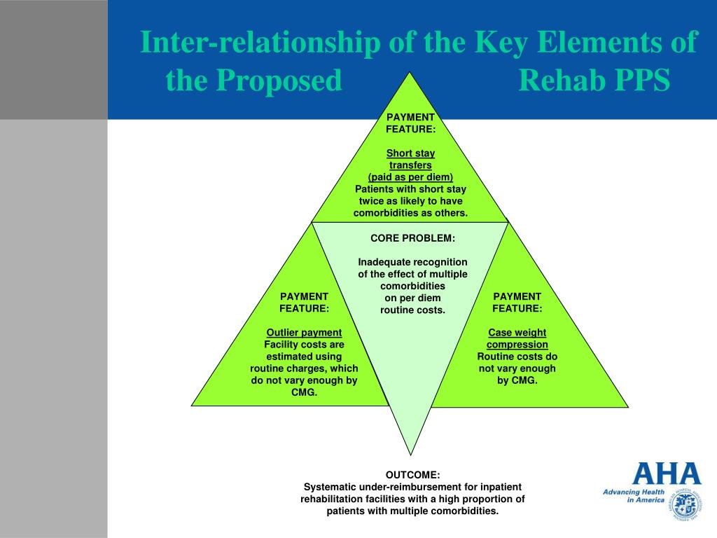 Inter-relationship of the Key Elements of the Proposed                      Rehab PPS