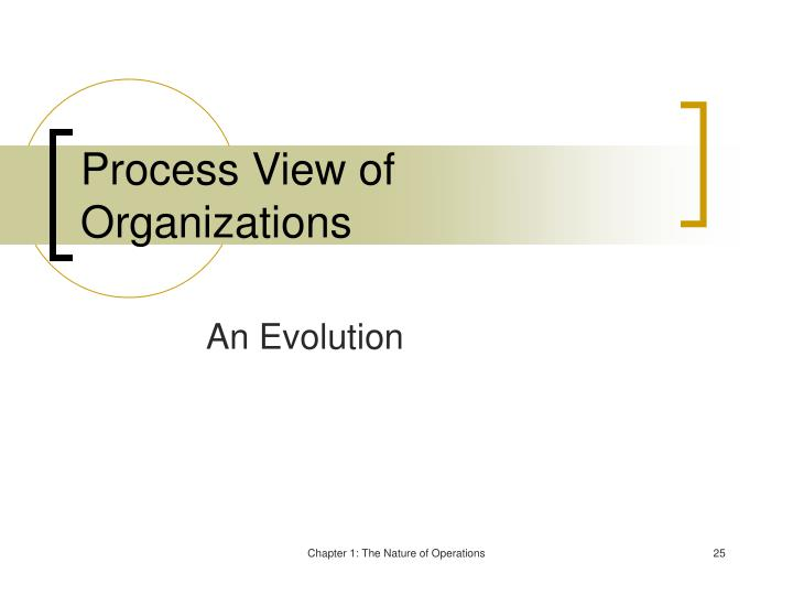 Process View of Organizations