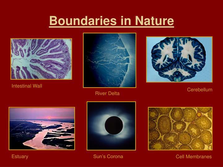 Boundaries in Nature