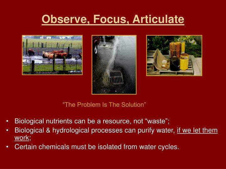 Observe, Focus, Articulate