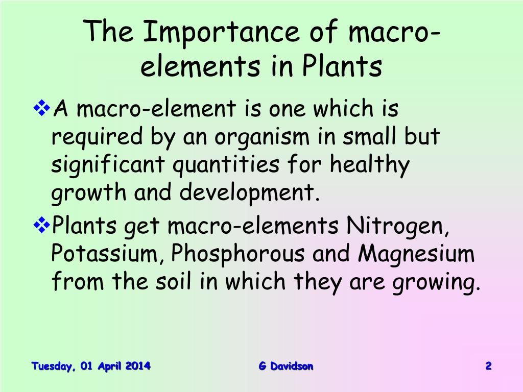 The Importance of macro-elements in Plants