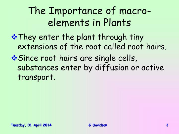 The importance of macro elements in plants3 l.jpg