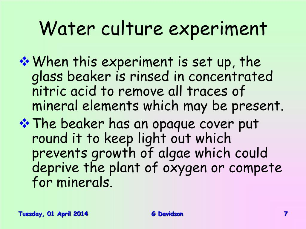 Water culture experiment