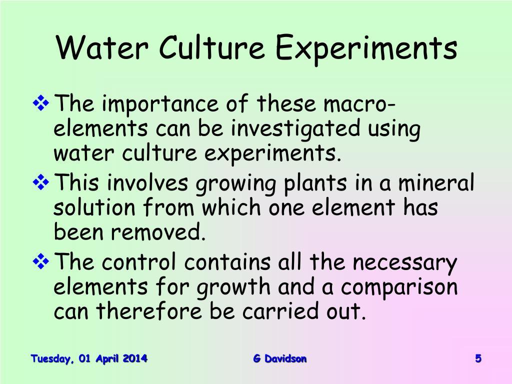 Water Culture Experiments