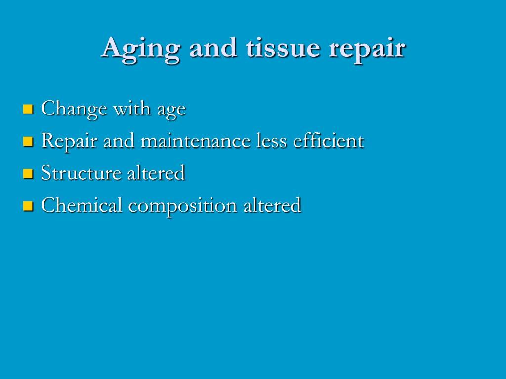 Aging and tissue repair