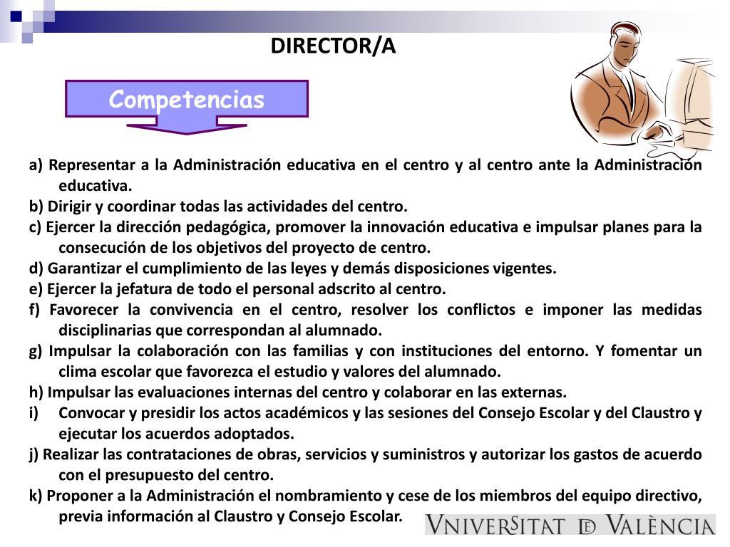 DIRECTOR/A